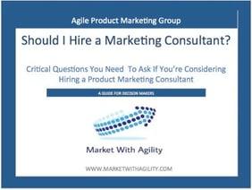 should I hire  a consultant